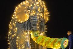 Greenlake Luminata lantern Parade 2016 (135)