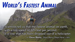 World's Fastest Animal � Dave Barry