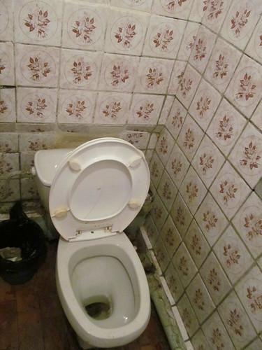 Besplatnye_tualety_Kosmos_Tehnikum_ 003