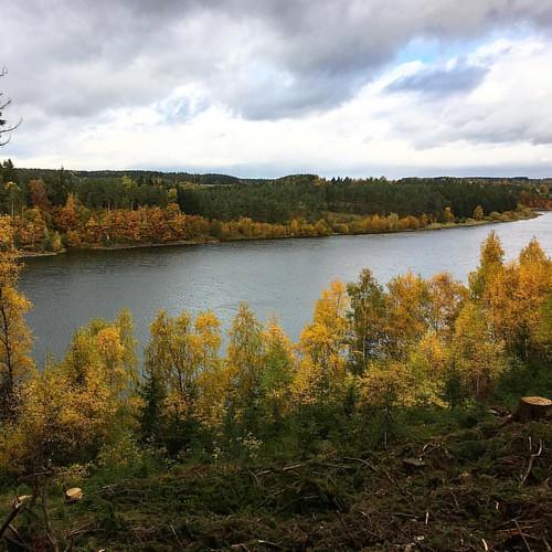 Sonnig bis Regen - alles war dabei…   #TalsperreZeulenroda #Talsperre #Hiking #Outdoor #Trekking #Garmin #Oregon750t #fēnix3 #BeatYesterday #running66