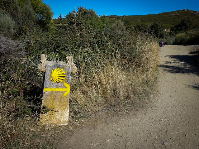 Camino-267