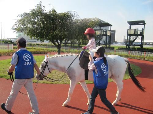 中京競馬場の乗馬体験
