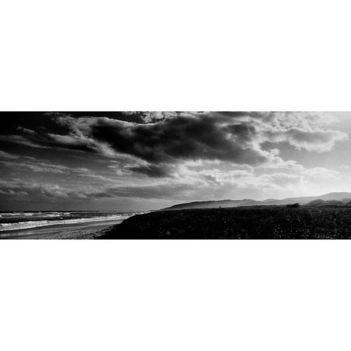 Seal Rocks #filmisnotdead #sealrocks #treacherybeach #xpan #hasselblad #hasselbladxpan