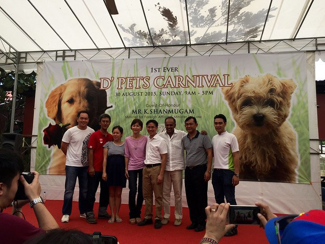 D'Pet Carnival