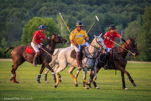 Action Polo Shot