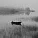 Mist ( Explore #1 ) by Tom Erik Sivertsen