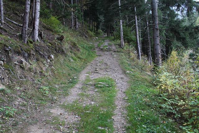 trail glacier cerro