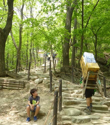 Co-Sokcho-Seoraksan-Sentier pédestre (10)