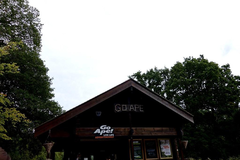 BGO Go Ape, Trent Park