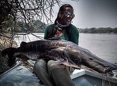 Fátima da Stamfish com um belo pintado fisgado no Mato Grosso.  #pescaamadora #pesqueesolte #baitcast #fly #pescaesportiva #sportfishing #pintado #matogrosso #monsterfish #bigfish #bassmaniacs #anglerapproved #angler #pescador #pescaria #bass #mulherespes