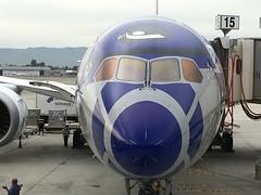 ANA Star Wars flight