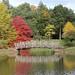 West Green House Garden Lake by davidhampton1066