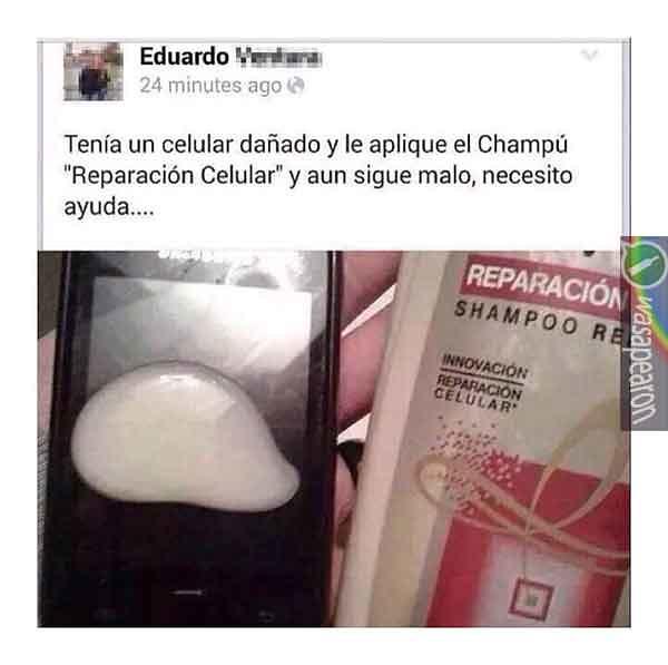 Alejandra pradon puta you have
