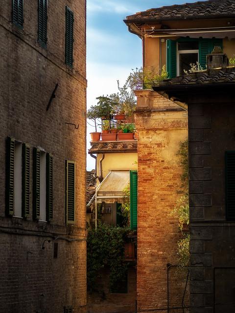 Summer in Siena.