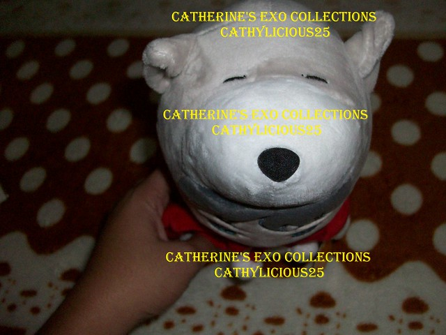 EXO COLLECTIONS 5