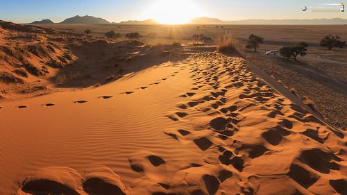 16x9 africa afrika dünen elimdune namib namibnaukluftnationalpark namibia sandwüste wallpaper wüste desert erg sanddesert hardapregion