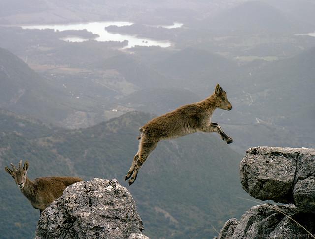 Salto de Fe - Jump of faith