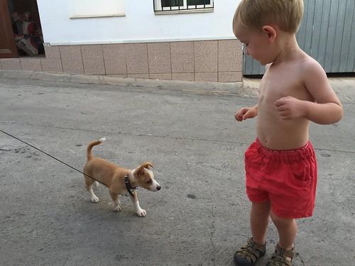 Ian meets puppy