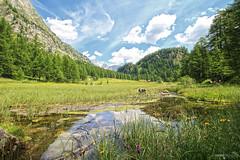 Crampiolo - Alpe Devero (Italy)