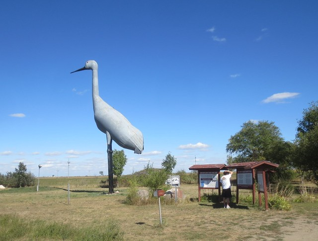 World's Largest Sandhill Crane