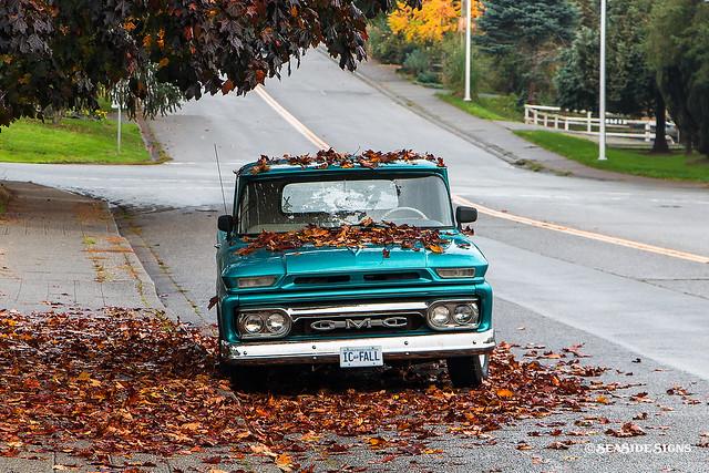 Inaudible Autumn ~ Cloverdale, BC