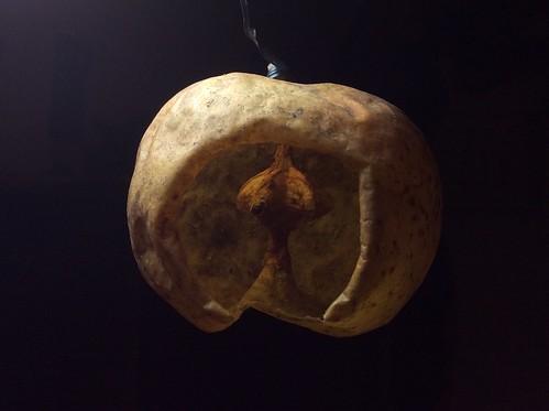 Apple lantern
