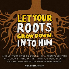 rooted and built up in him and established in the faith, just as you were taught, abounding in thanksgiving. Colossians 2:7 ESV