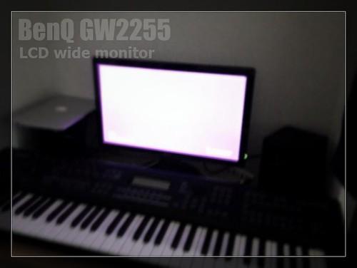 GW2255_eye