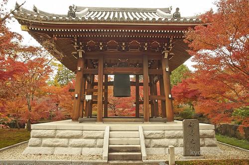 【写真】2014 紅葉 : 智積院/2020-09-07/IMGP7568