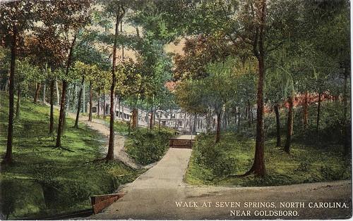 Walk, Seven Springs 001