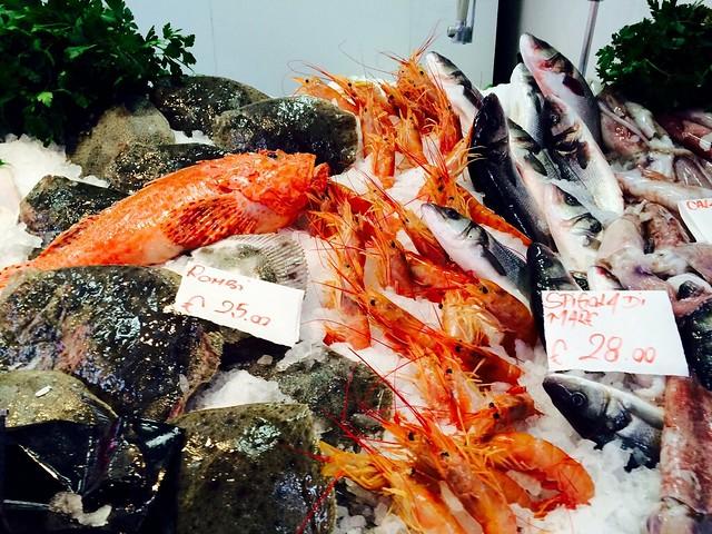 fish-italy-cr-brian-dore