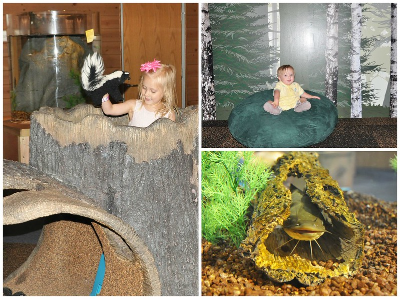 Carnegie Science Center Nature Exhibit