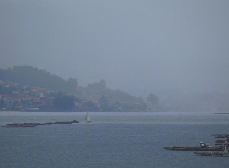 Día de luz y niebla