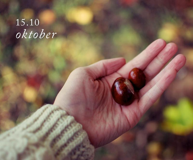 15.10 oktober