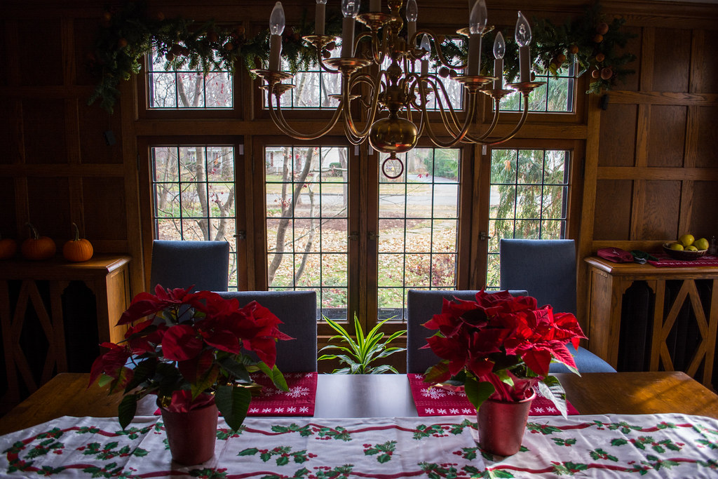 christmas at my house 04 - 2015-12-06