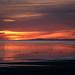 Sunset in Antelope Island, Salt Lake (USA) by jordicerda52