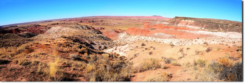 Painted Desert Panorama From  Whipple Point