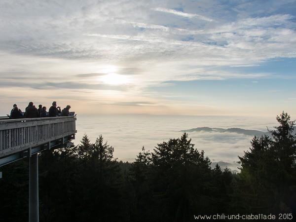 Aussicht ins Nebelmeer