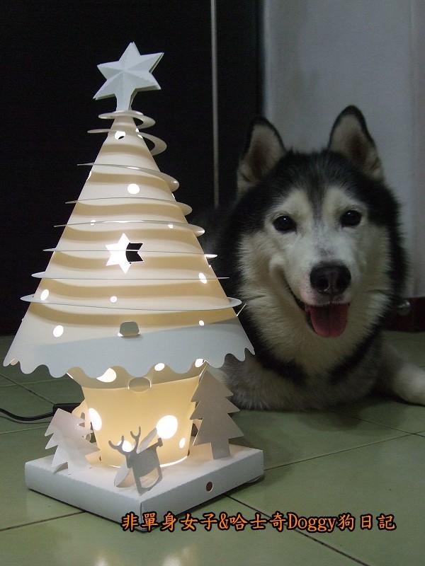 Doggy與紙箱王聖誕樹造型燈飾組08