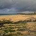Fistral Beach, Newquay, Cornwall by Lemmo2009