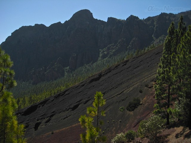view 0011 Tenerife, Canary Islands, Spain