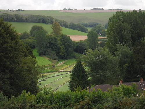 Watercress Farm in Ludwell, from Horse Hill
