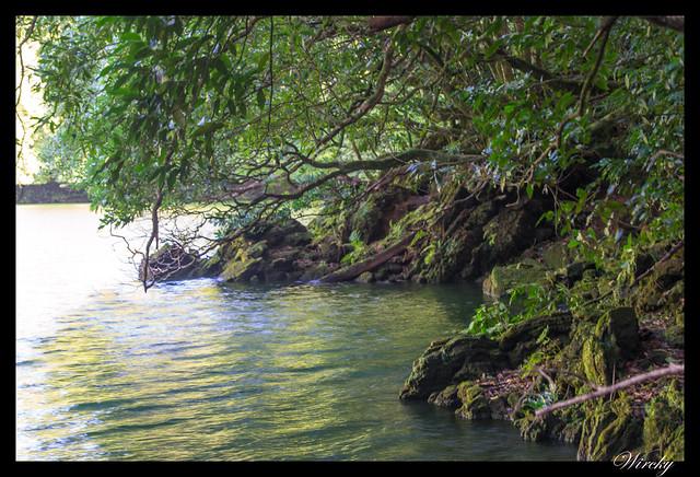 Rincón del lago do Congro