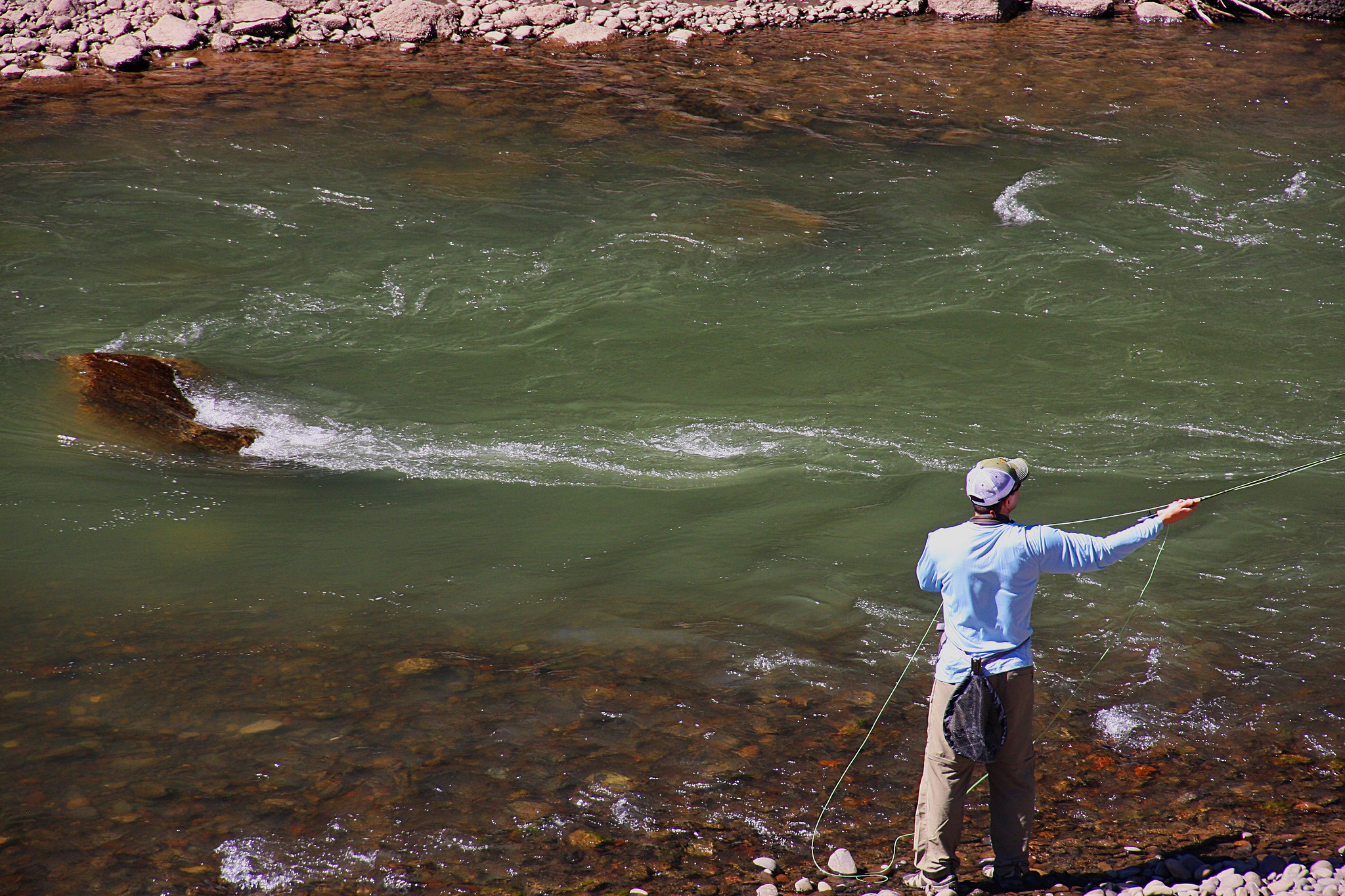 Fly fishing in yellowstone national park quickies for Yellowstone national park fishing