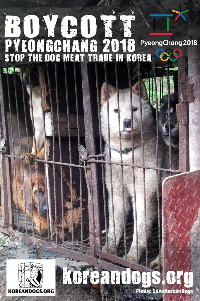 Boycott_Pyeongchang_1440x2160_k-2