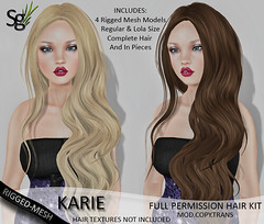 !Saltgrass!Full Permission Rigged-Mesh Hair