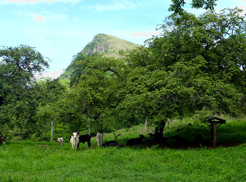 Guanacaste - Costa Rica