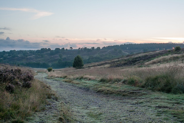 Sunrise over Cannock Chase