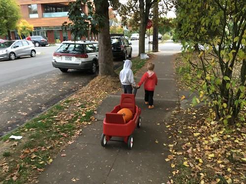 Pumpkin expedition