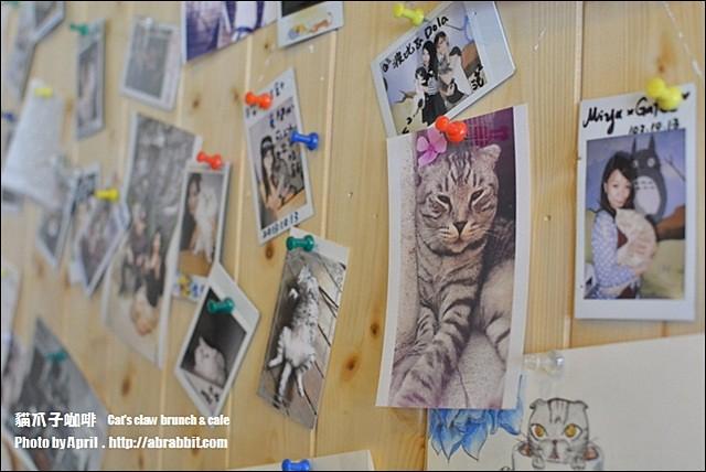 22496562896 2e3c61a328 z - [台中]貓爪子咖啡--早午餐豐盛,店內有四隻貓兒超可愛!@北區 大德街 中國醫